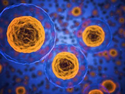 Hormony – gdzie, co i jak?