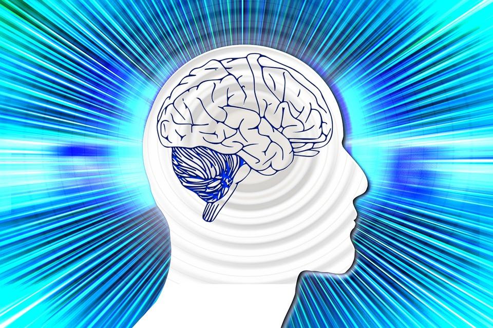 Czym jest psychobiologia?